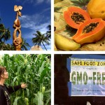 Islands at Risk – Genetic Engineering in Hawai'i TRANSCRIPT