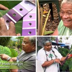 Documenting Taro Varieties – with Jerry Konanui