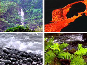 Hawaiian environment, Hawaiian rainforest, beaches, iliili beach, nature, waterfalls