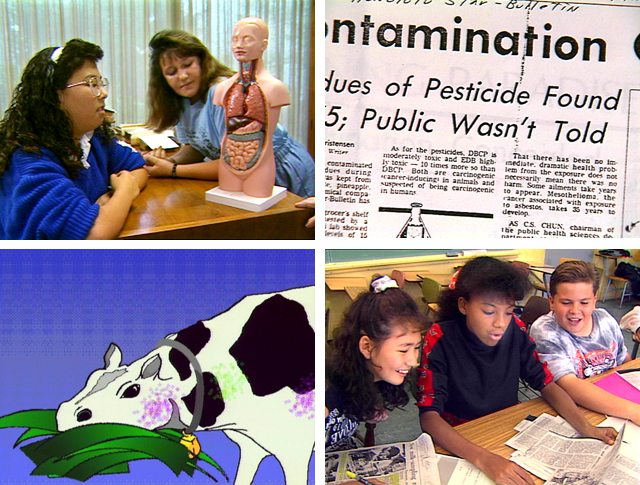 Hawaii environment, heptachlor, pesticides, pesticide contamination, food supply, dairy products, environmental education