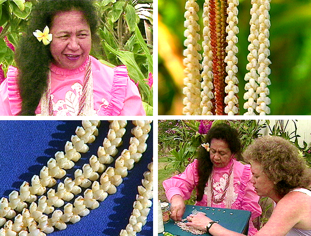 Hawaiian language, Hawaiian culture, pupu o Niihau, lei pupu, Niihau, Kaleipua Pahulehua, shell lei, oral history, Hawaiian art