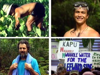 Kalo Pa'a o Waiāhole – Hard Taro of Waiāhole