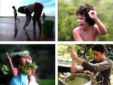 Hawaiian culture, Hawaiian values, Hawaiian history, hula, Hawaiian crafts, Hawaiian traditions, sustainability