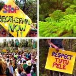 Wao Kele o Puna – Save the Rainforest