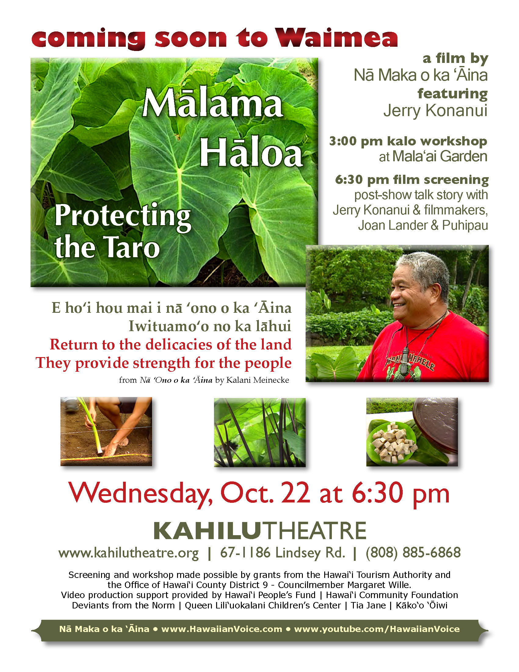 Malama_Haloa_Kahilu_Theatre_FLYER_REVISED_10.11.14_sm
